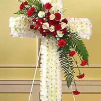 Phân Ưu cùng các anh Đinh Xuân Thái, Đinh Xuân Dương, chị Đinh thị Tuyết Mai cùng tang quyến
