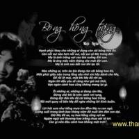 Bông hồng trắng (Nhật Ngân), qua tiếng hát Thanh Thúy
