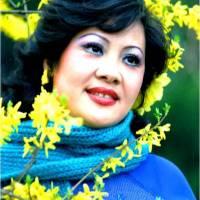 Đôi nét về Ca sĩ Thu Hương