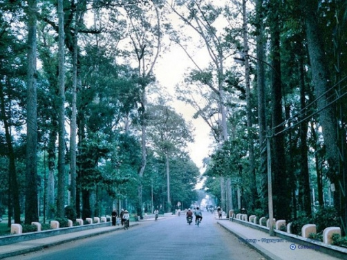 Saigon 1967 - Tao Dan