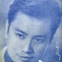 Chuyến đò vĩ tuyến (Lam Phương), qua tiếng hát Hoàng Oanh