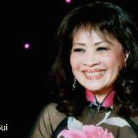 Một chuyến bay đêm ( Song Ngọc & Hoài Linh), qua tiếng hát Thanh Thúy